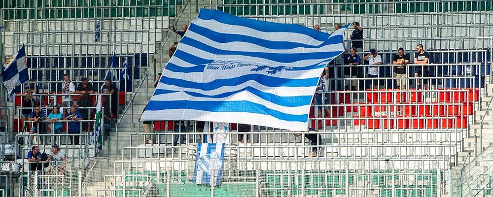 SK Rapid Wien - TSV Hartberg